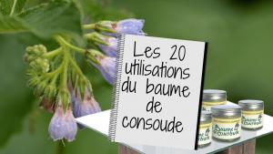 Les 20 utilisations du baume de consoude